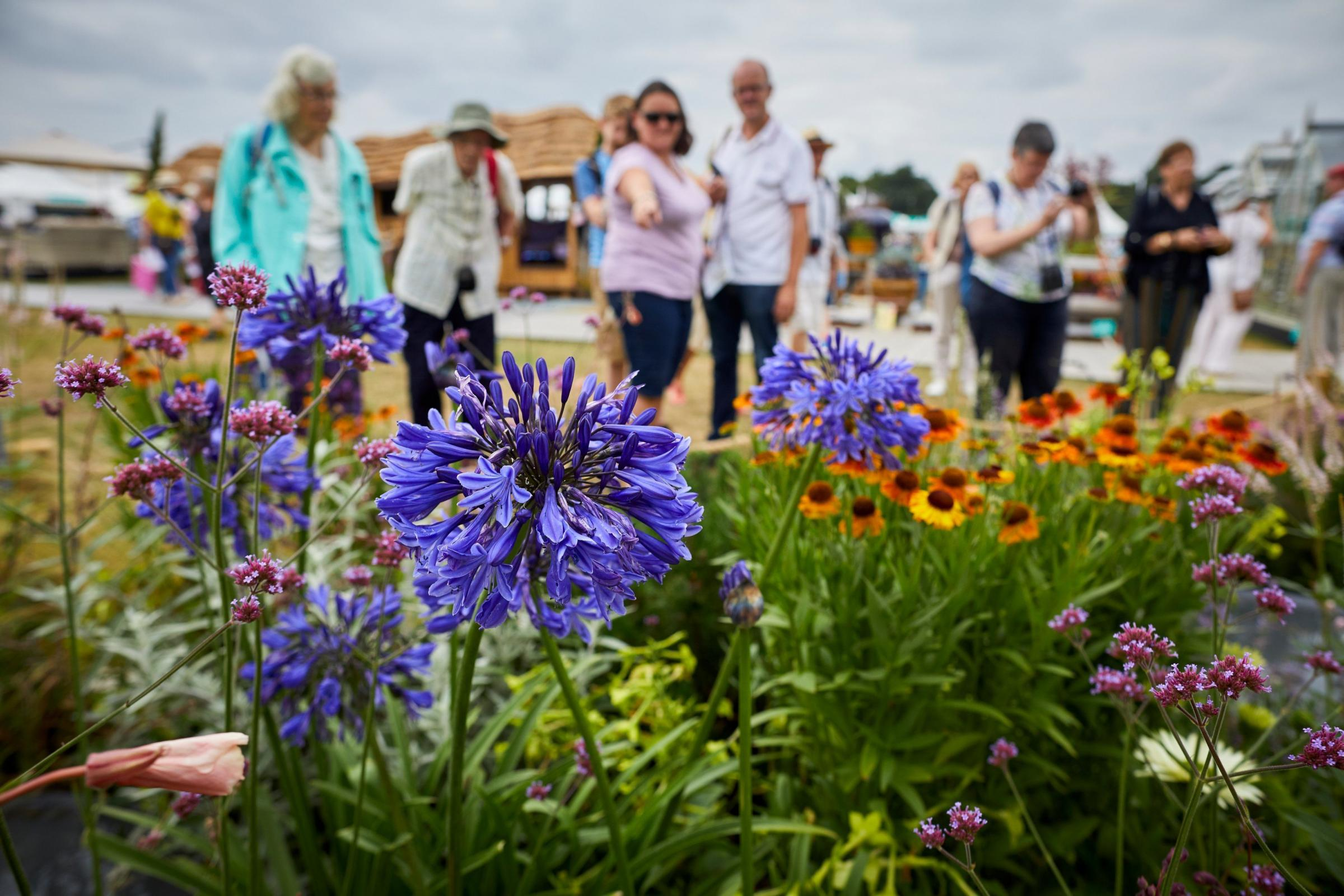 Tatton Park flower show. Picture: Mark Waugh/RHS/PA.