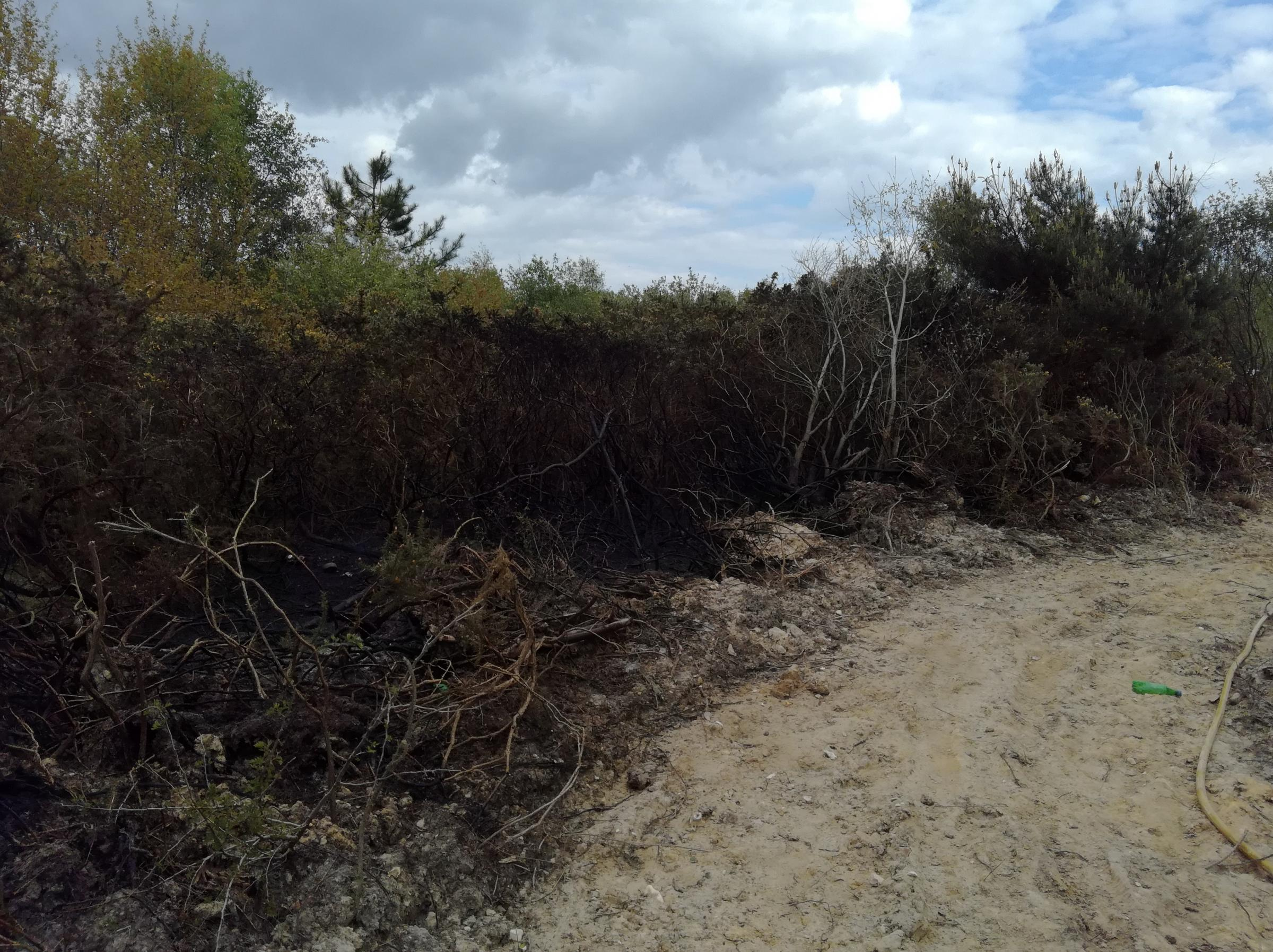 Police are hunting people who started fires on scrubland near Sterte Industrial Estate on May 5 and 6