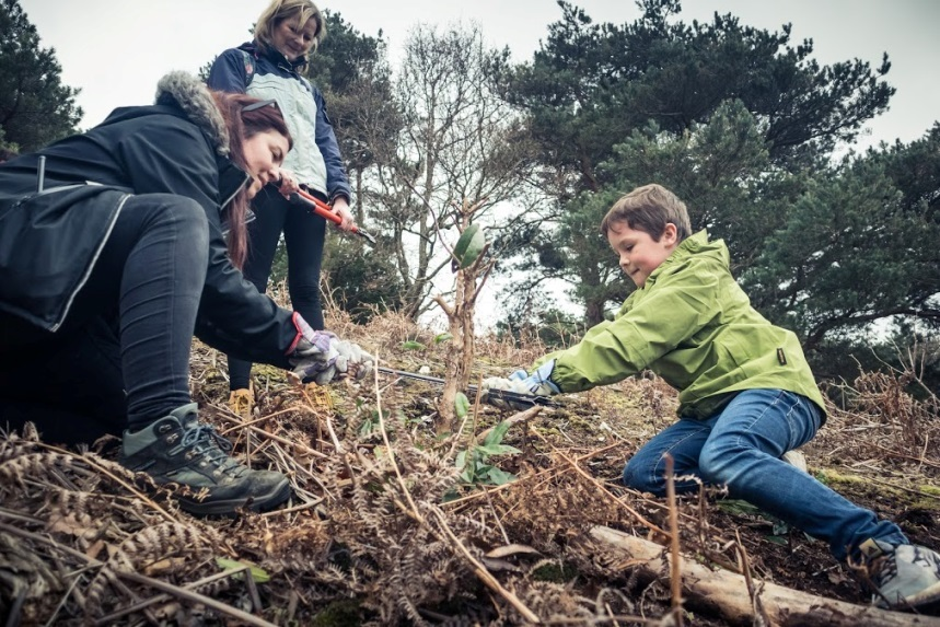 How to become a Brownsea Island junior ranger