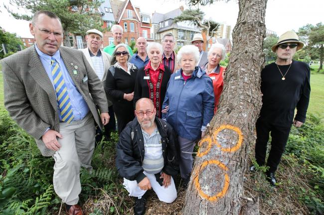 Angry residents after two trees were vandalised on West Cliff Green three years ago