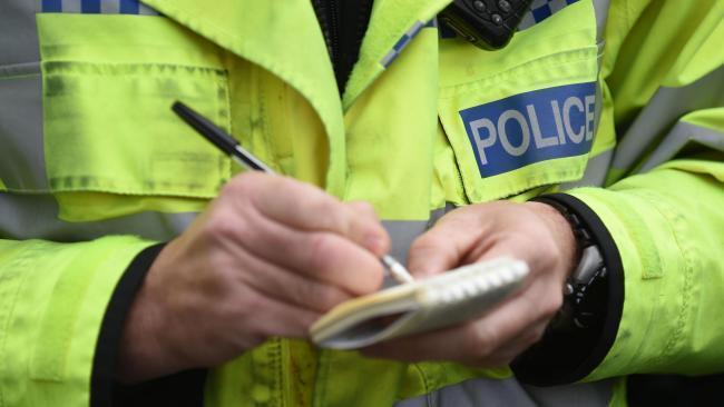 Cat beheaded in horror attack in Dorset town