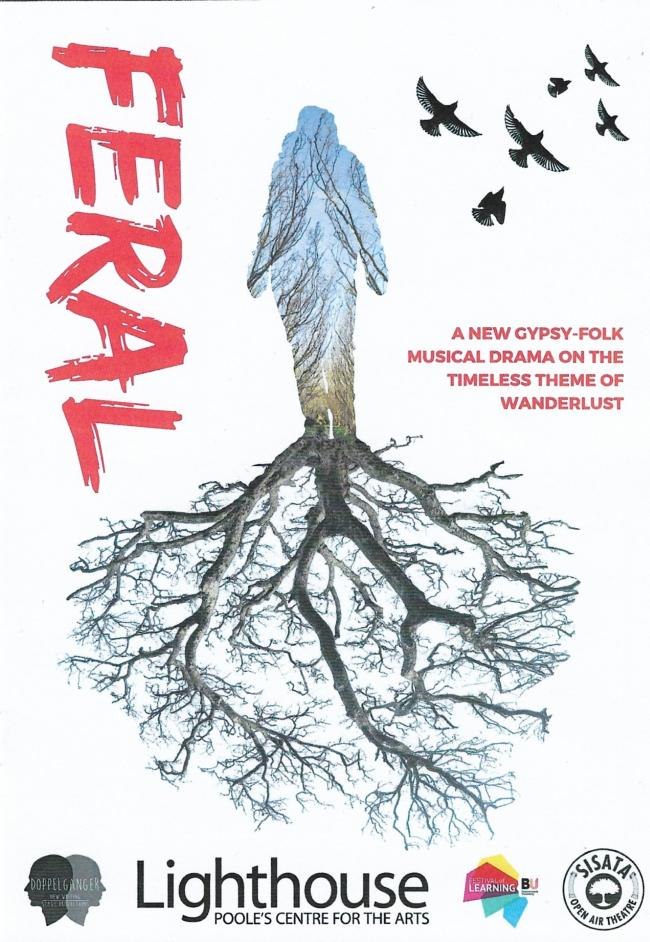 Feral at Poole Lighthouse